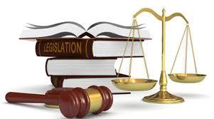 Hạn chế năng lực hành vi dân sự theo quy định của Bộ luật Dân sự 1995 là gì?