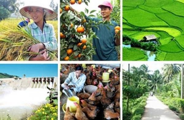Lĩnh vực đầu tư theo hình thức đối tác công tư trong nông nghiệp, nông thôn