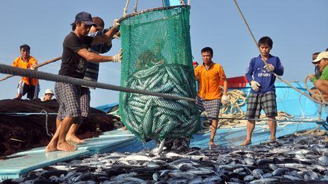 Có được sử dụng người dưới 18 tuổi làm công việc lặn biển, đánh bắt cá xa bờ hay không?
