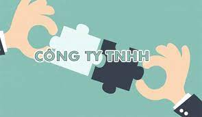 Bảo toàn vốn của Công ty TNHH một thành viên Mua bán nợ Việt Nam được quy định ra sao?
