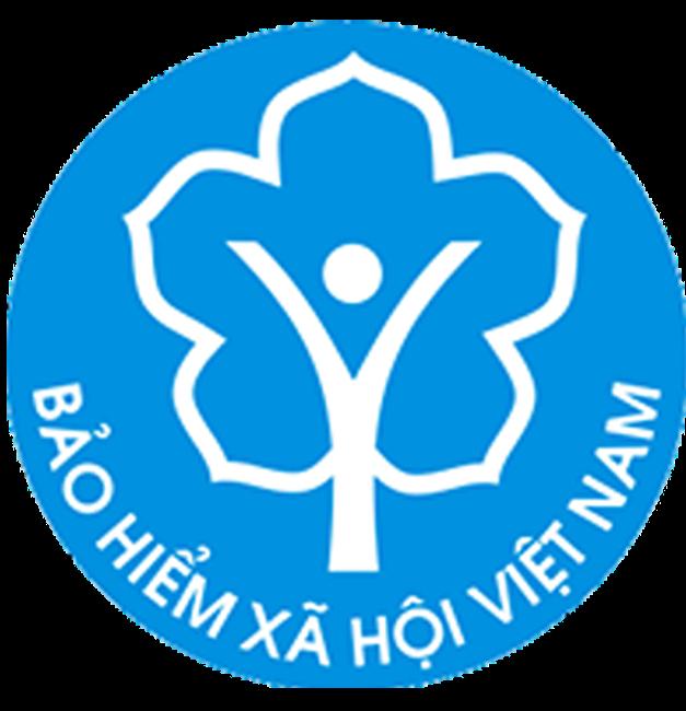 Cổng Thông tin điện tử Bảo hiểm xã hội Việt Nam được quy định như thế nào?