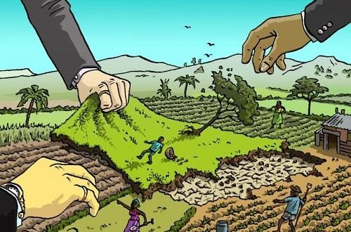 Trưởng thôn có thẩm quyền cho thuê đất không?