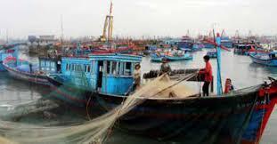 Cấp, cấp lại, thu hồi giấy phép khai thác thủy sản