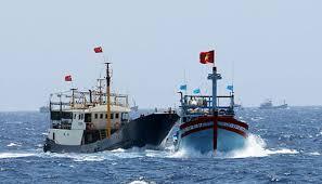 Chức trách máy phó nhất trên tàu cá công vụ được quy định như thế nào?