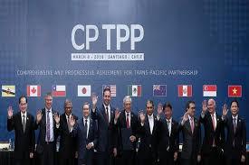 Kết luận điều tra dùng làm căn cứ áp dụng biện pháp tự vệ chuyển tiếp thực thi Hiệp định CPTPP