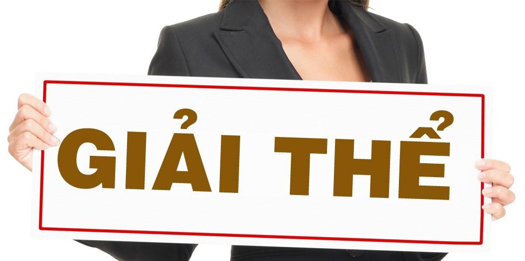 Quyết định giải thể Quỹ bảo lãnh tín dụng cho doanh nghiệp nhỏ và vừa gồm những nội dung gì?