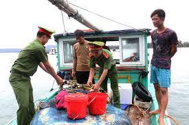 Mức phạt đối với hành vi khai thác trái phép 15kg thủy sản thuộc nhóm II