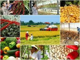 Đối tượng áp dụng của bảo hiểm nông nghiệp