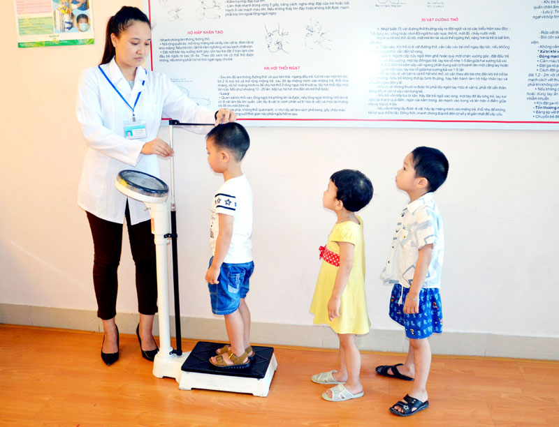 Nhân viên y tế trường học cần có chứng chỉ hành nghề không?