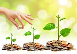 Nhà nước không bắt buộc nhà đầu tư phải thực hiện những yêu cầu nào trong quá trình đầu tư?