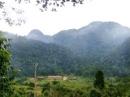 Nội dung của dự án thành lập khu rừng đặc dụng được quy định ra sao?