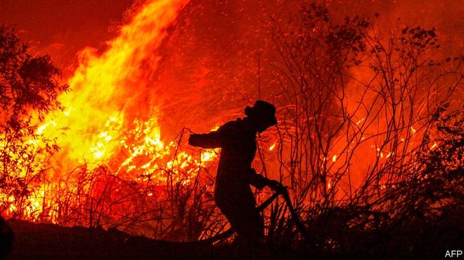 Muốn tham gia huấn luyện nghiệp vụ phòng cháy chữa cháy thì liên hệ ở đâu?