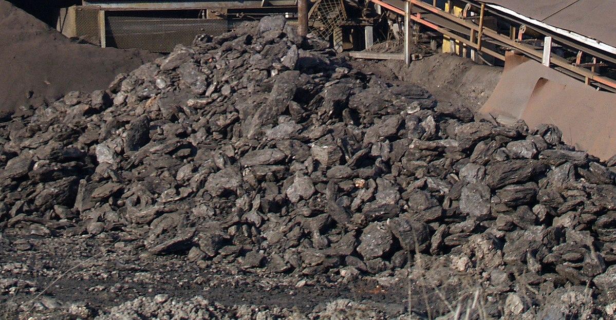 Nhóm ngành khai thác than cứng và than non gồm những hoạt động gì?