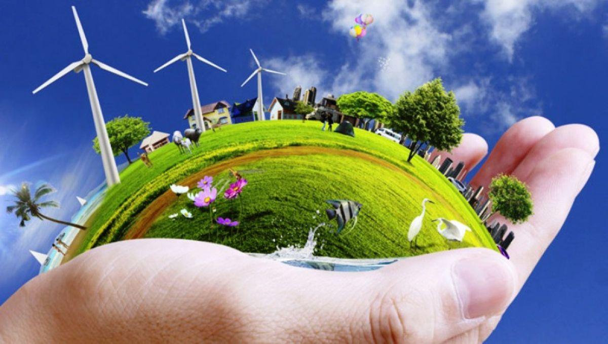 Nhóm giải pháp 6 thực hiện kế hoạch phát triển bền vững doanh nghiệp khu vực tư nhân đến năm 2030