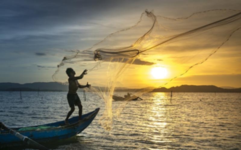 Khai thác thủy sản là ngành nghề kinh doanh có điều kiện không?