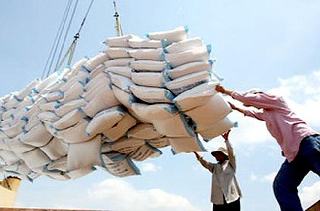 Thủ tục kiểm tra điều kiện kinh doanh xuất khẩu gạo