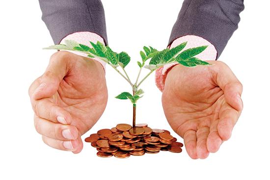 Quỹ dự phòng rủi ro bảo lãnh của Ngân hàng phát triển Việt Nam