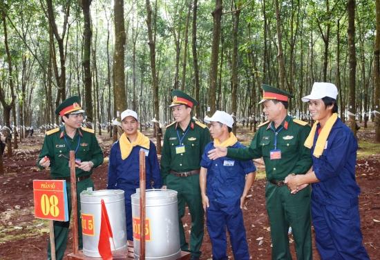 Mức phạt hành vi Chủ rừng không báo cáo biến động về diện tích rừng hiện nay là bao nhiêu?