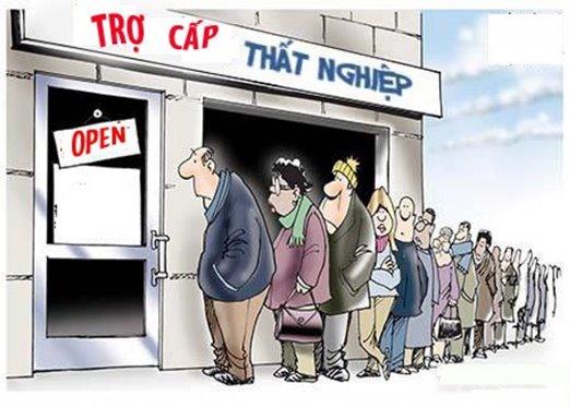 Thông báo về việc tìm kiếm việc làm trễ có được nhận trợ cấp thất nghiệp không?