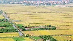 Đất được nhà nước giao khi hết thời hạn sử dụng có bị thu hồi không?