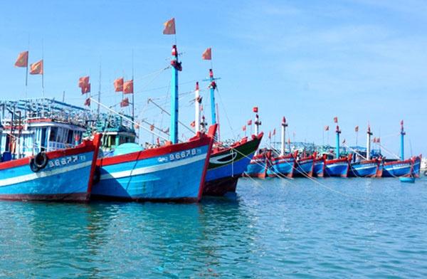 Vận chuyển hàng đến chậm do tàu bị va đập có chịu trách nhiệm bồi thường không?