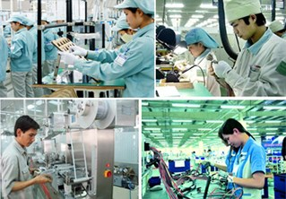 Thành lập tổ chức giúp việc xây dựng tiêu chuẩn kỹ năng nghề quốc gia