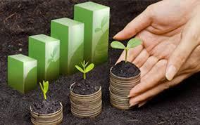 Thủ tục thành lập tổ chức kinh tế của nhà đầu tư nước ngoài
