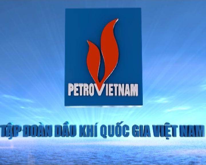 Công ty mẹ Tập đoàn Dầu khí Việt Nam là doanh nghiệp như thế nào?