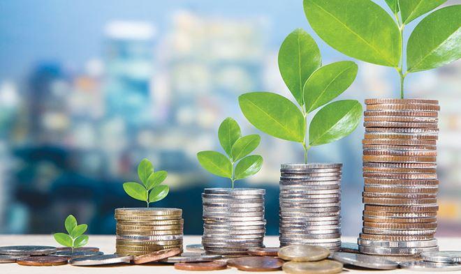 Làm rõ hồ sơ mời sơ tuyển khi tuyển lựa chọn nhà đầu tư thực hiện dự án đầu tư theo hình thức đối tác công tư