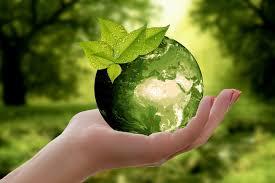 Việc thẩm định báo cáo đánh giá môi trường chiến lược được thực hiện như thế nào?