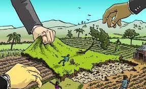 Chủ tịch UBND cấp huyện có được ủy quyền ký quyết định cưỡng chế thu hồi đất không?