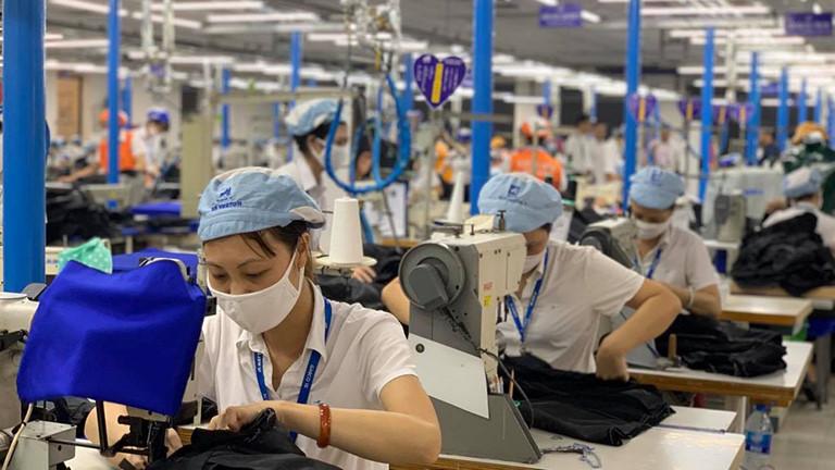 Lao động tự do có được hưởng hỗ trợ từ Quỹ BHTN không?
